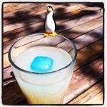 Antarktik dans un verre anisé !